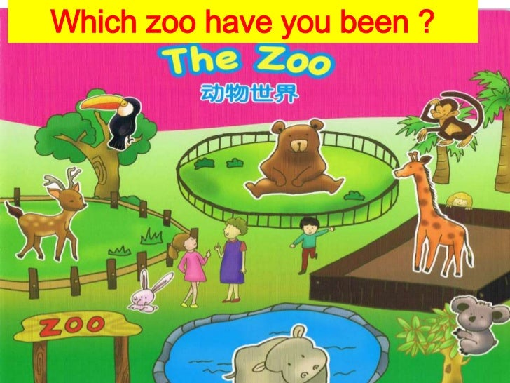 Which zoo have you been ?