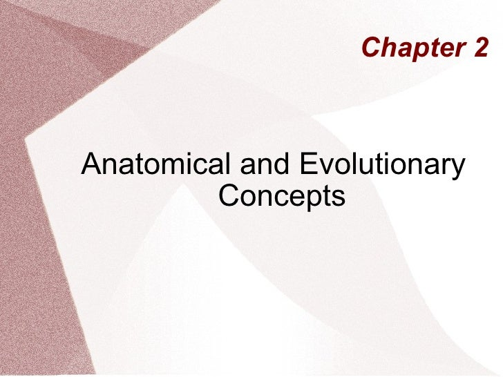 Chapter 2 Anatomical and Evolutionary Concepts
