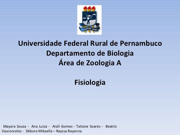 Universidade Federal Rural de Pernambuco Departamento de Biologia Área de Zoologia A Fisiologia Mayara Souza -  Ana Luiza ...