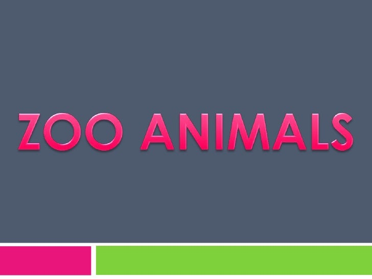 ZOO ANIMALS<br />