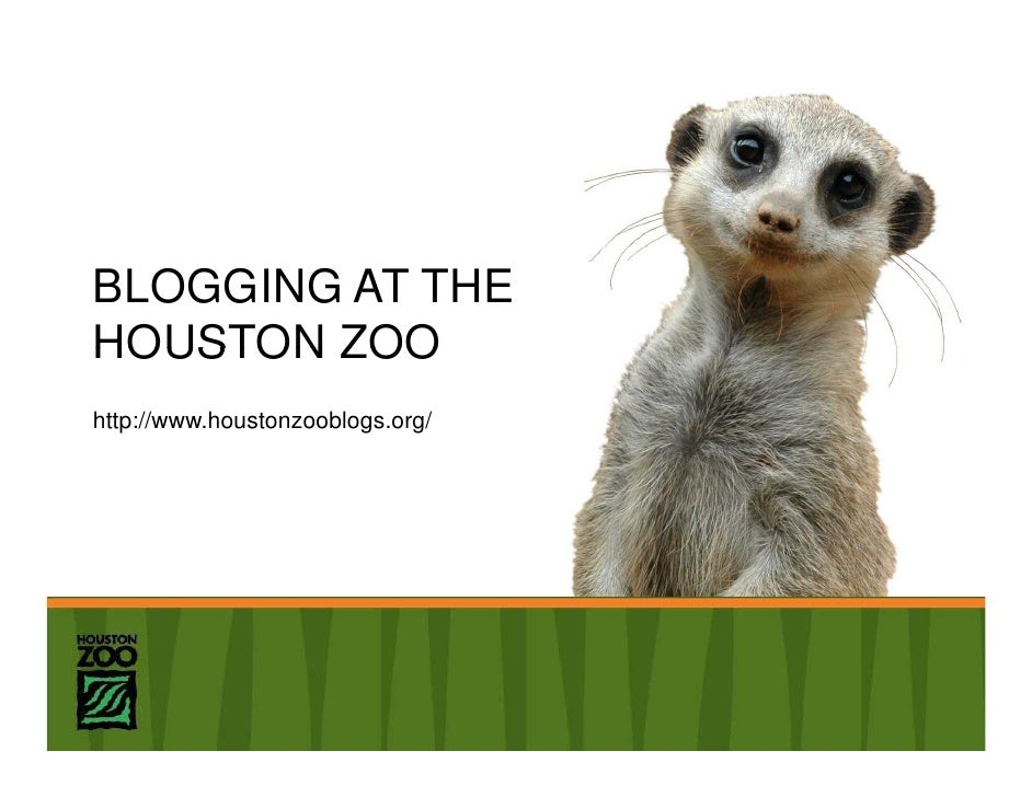 BLOGGING AT THE HOUSTON ZOO http://www.houstonzooblogs.org/