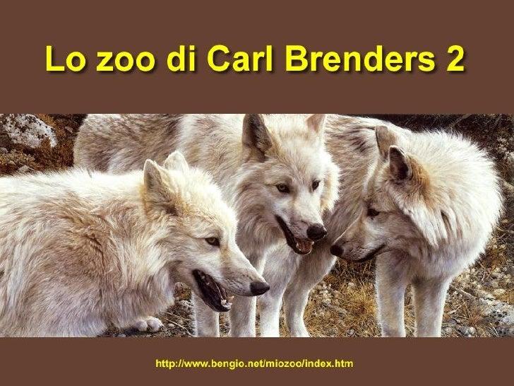 Zoo di Carl Brenders2