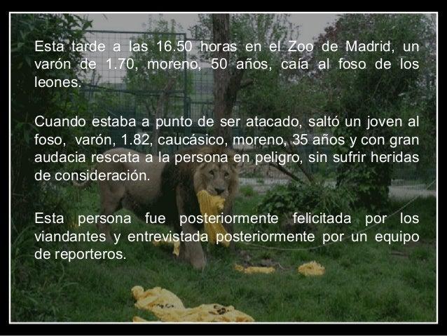 Esta tarde a las 16.50 horas en el Zoo de Madrid, un varón de 1.70, moreno, 50 años, caía al foso de los leones. Cuando es...