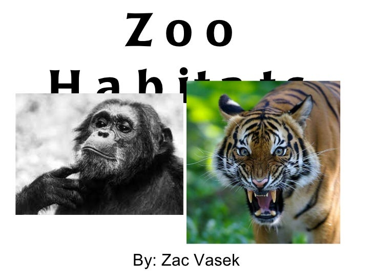 Zoo Habitats By: Zac Vasek