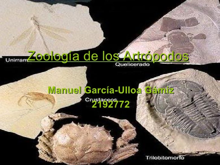 Zoología de los Artrópodos   Manuel García-Ulloa Gámiz           2192772
