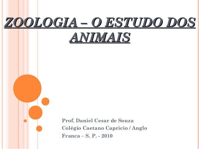ZOOLOGIA – O ESTUDO DOSZOOLOGIA – O ESTUDO DOS ANIMAISANIMAIS Prof. Daniel Cesar de Souza Colégio Caetano Caprício / Anglo...