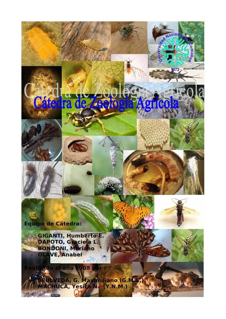 Equipo de Cátedra:    -   GIGANTI, Humberto E.   -   DAPOTO, Graciela L.   -   BONDONI, Mariano   -   OLAVE, Anabel  Reali...
