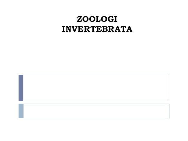 ZOOLOGIINVERTEBRATA