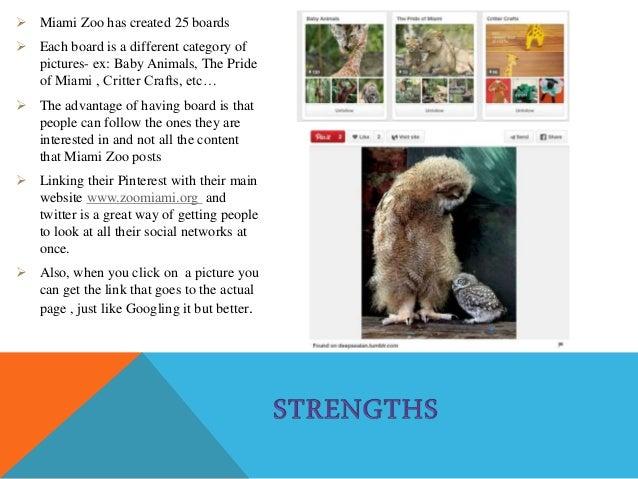 swot analysis taronga zoo Complete the swot analysis below strengths  answers may include – luna  park, taronga zoo, sydney aquarium, imax, mogo zoo, royal easter show.