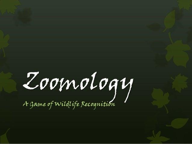 ZoomologyA Game of Wildlife Recognition