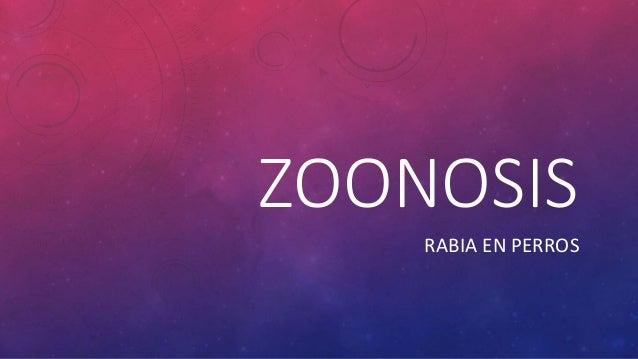ZOONOSIS RABIA EN PERROS