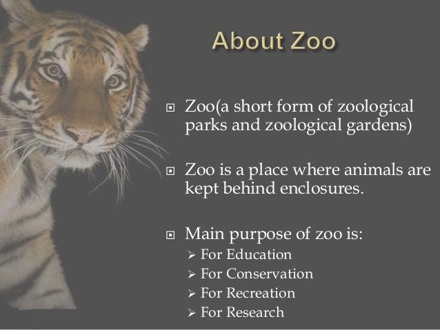 Zoo presentation jaipur zoo 2 toneelgroepblik Gallery
