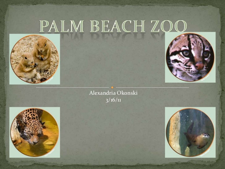 Palm Beach zoo<br />Alexandria Okonski<br />3/16/11<br />