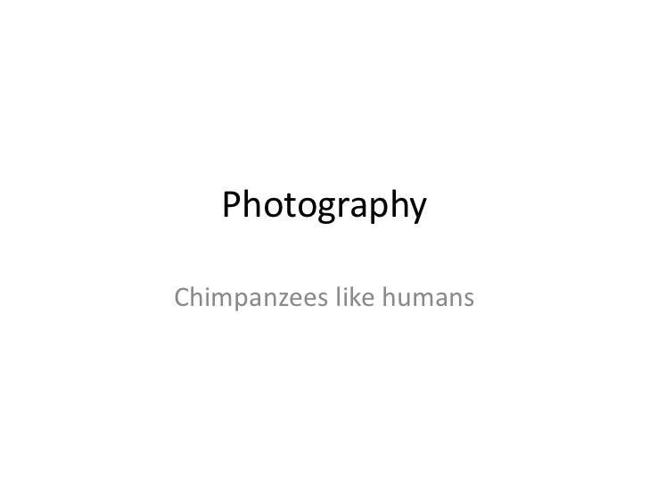 Photography<br />Chimpanzees like humans<br />
