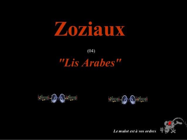 """ZoziauxZoziaux (04) """"Lis Arabes""""""""Lis Arabes"""" Le mulot est à vos ordres"""