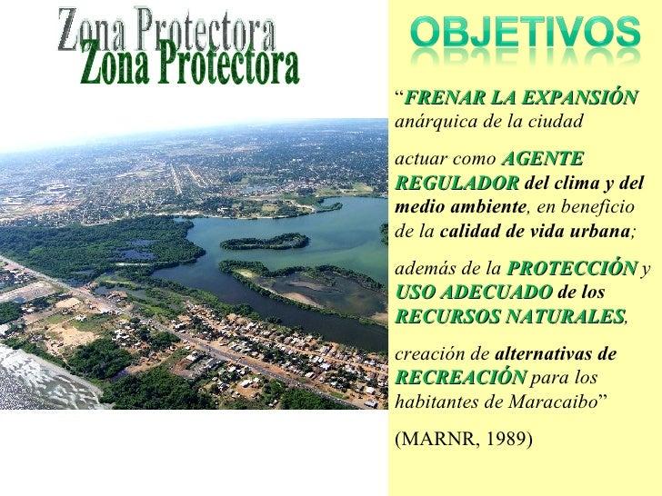 """"""" FRENAR LA EXPANSIÓN   anárquica de la ciudad  actuar como  AGENTE REGULADOR  del clima y del medio ambiente , en benefic..."""