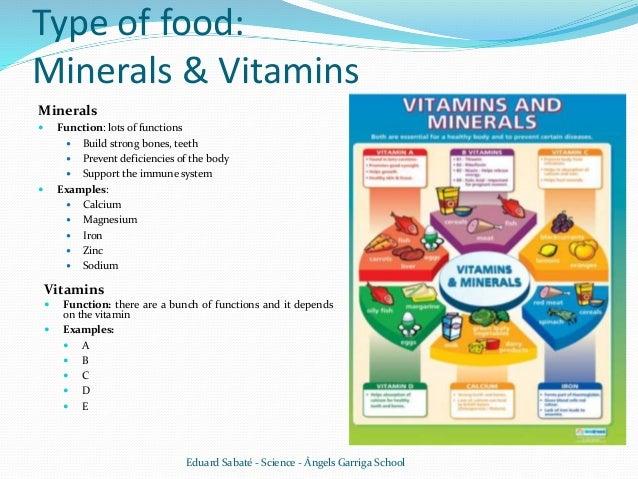 Digestive System Food V06