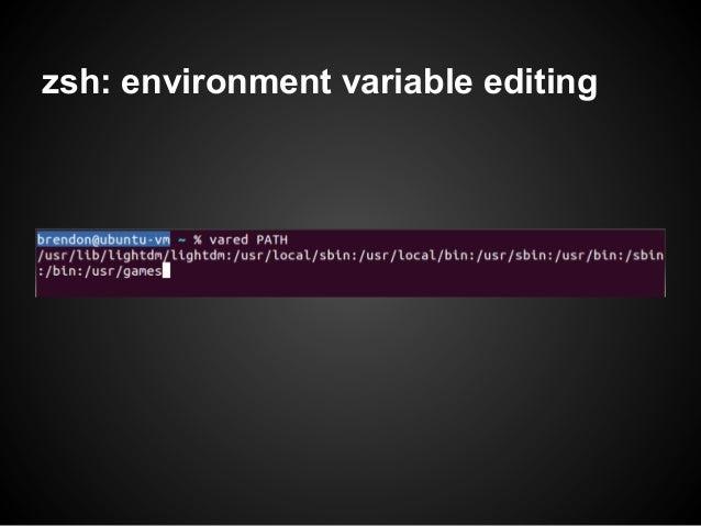 zsh: environment variable editing