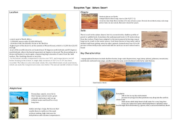 Ecosystem Type: Sahara Desert<br /><ul><li>Location:-covers most of North Africa- 3,500,000 square miles (9,000,000 km2) -...