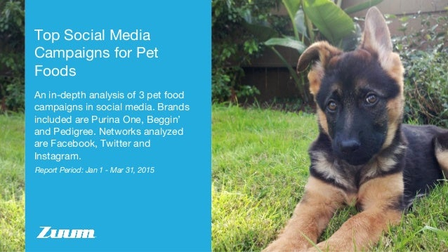 Report Period: Jan 1 - Mar 31, 2015 Top Social Media Campaigns for Pet Foods An in-depth analysis of 3 pet food campaigns ...
