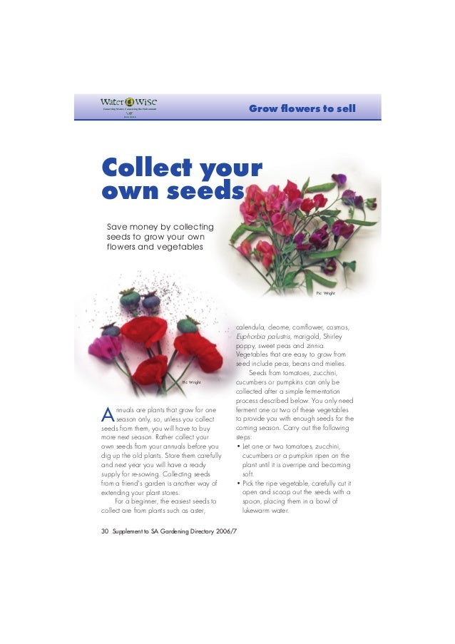 30Supplement to SA Gardening Directory 2006/7 Annuals are plants that grow for oneseason only, so, unless you collectseeds...