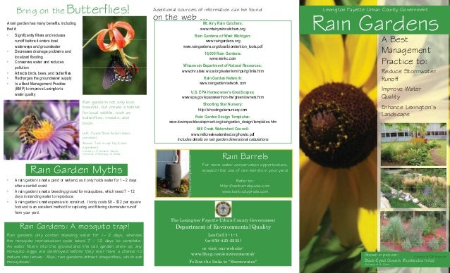 Bring on the Butterflies!  Bring on the on the web ... Lexington Fayette Urban County Government  A rain garden has many b...