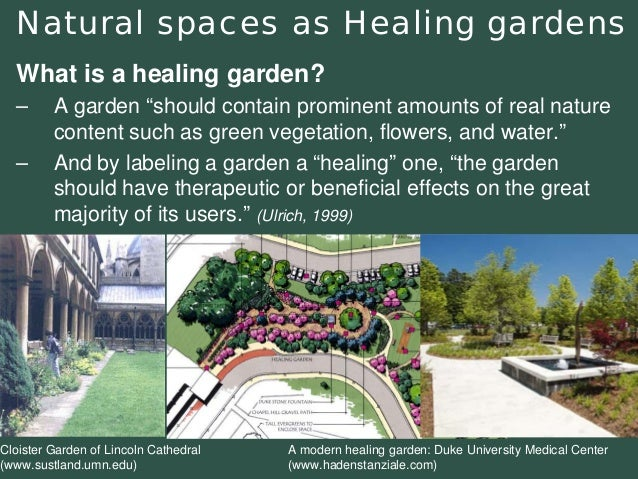 """Natural spaces as Healing gardens  What is a healing garden?  –Agarden """"should contain prominent amounts of real nature co..."""
