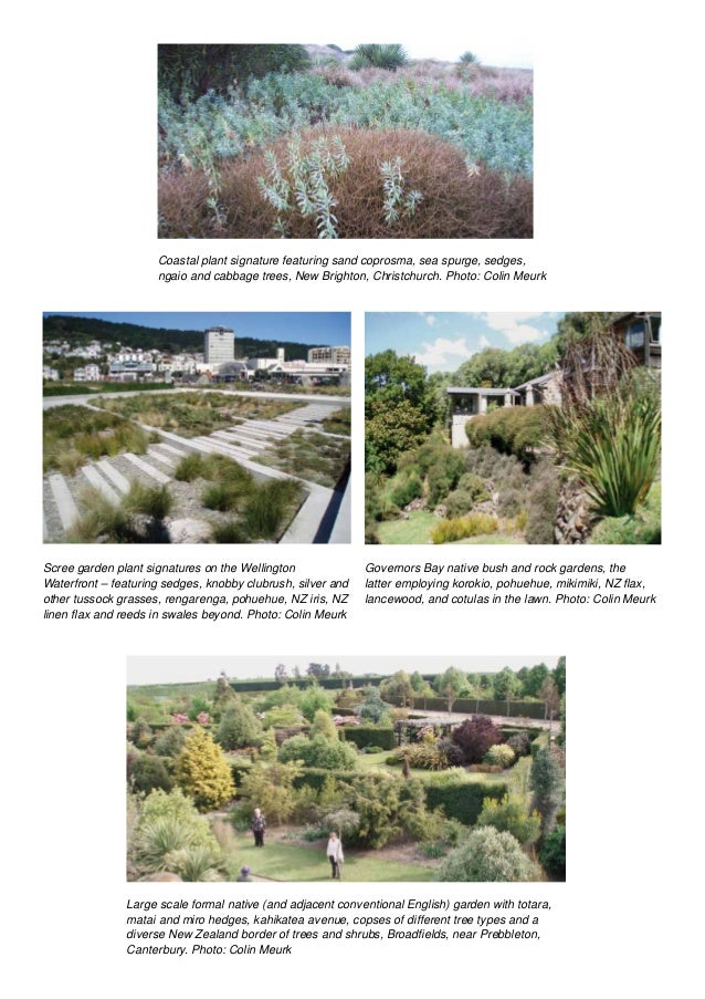 Urban Greening Manual: How to Put Nature into Our Neighbourhoods Slide 2