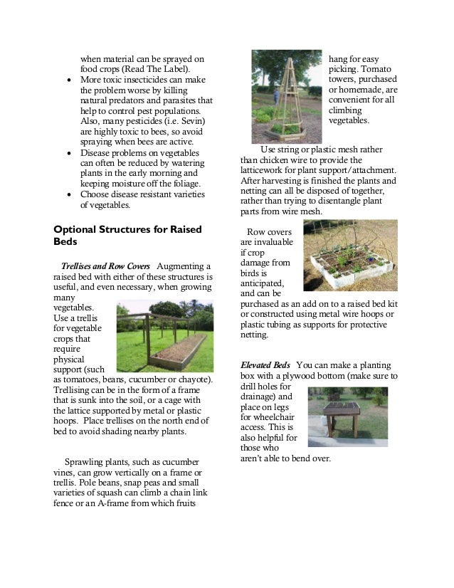 A Guide to Raised Bed Gardening in Miami-Dade County, Florida