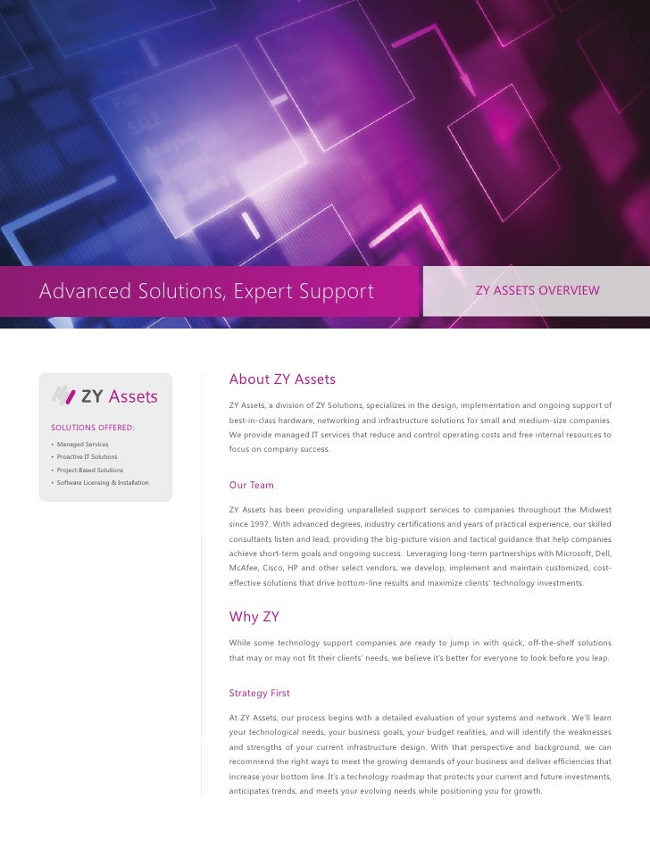 Advanced Solutions, Expert Support                                                                         ZY ASSETS OVERV...