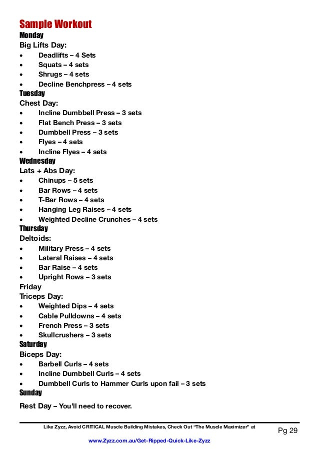 aesthetic bodybuilding workout plan pdf