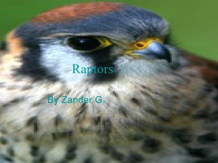 Raptors By Zander G.