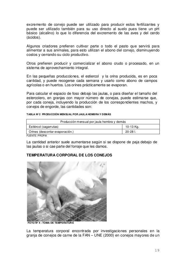 Famoso Anatomía Del Sistema Reproductor De Conejo Embellecimiento ...