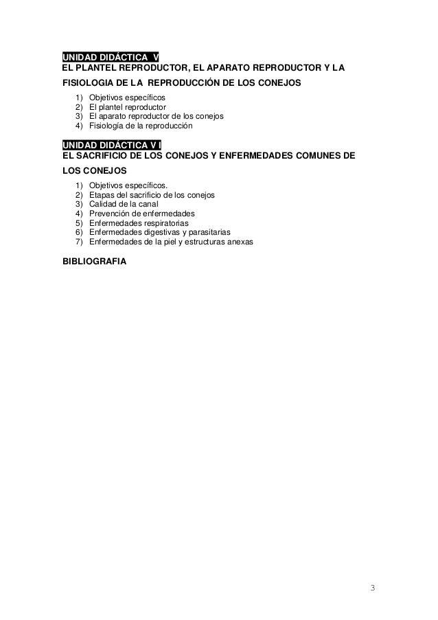 Bonito Anatomía Del Sistema Reproductor De Conejo Imagen - Imágenes ...