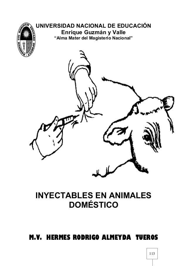 """UNIVERSIDAD NACIONAL DE EDUCACIÓN Enrique Guzmán y Valle """"Alma Mater del Magisterio Nacional""""  INYECTABLES EN ANIMALES DOM..."""
